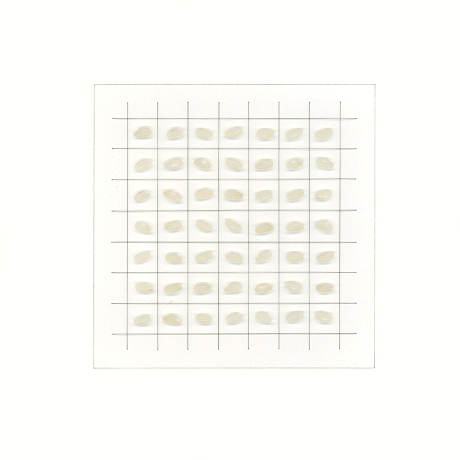 kasahara_notation-59-18_white square
