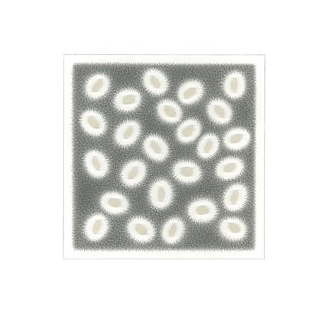 kasahara_notation 73-19