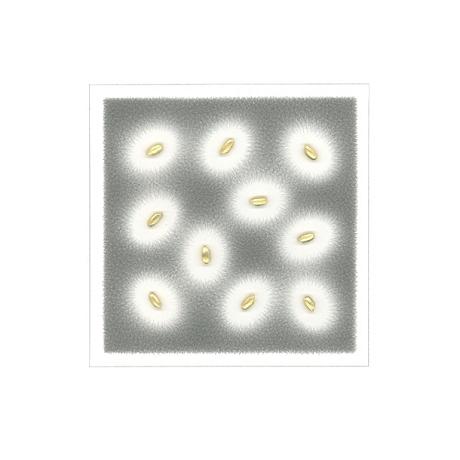 kasahara_notation 20-21
